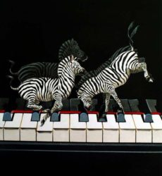 Jean-Noel Rochut – Exercices de piano – Hervé & Pouillard – Editions Henry Lemoine