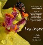 grafipoèmes – Les insectes